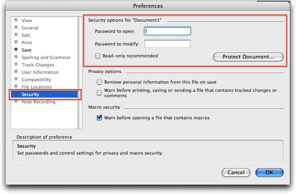 set word document password