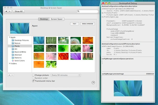 Mac OS X Desktop Background Debugger Window