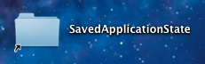 Saved Application State alias for easy access to delete saved app states