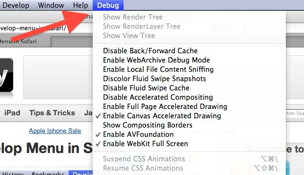 Debug menu in Safari