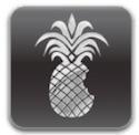 redsnow logo