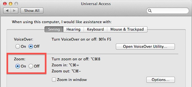Screen Zoom in OS X Lion
