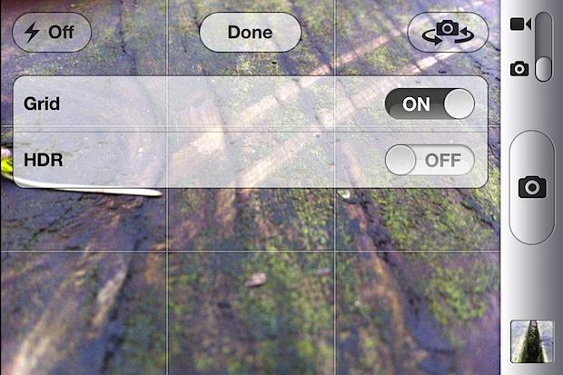 iPhone camera grid