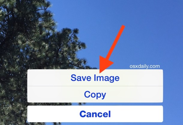 Tap and hold to save an image from Mail on iPhone and iPad