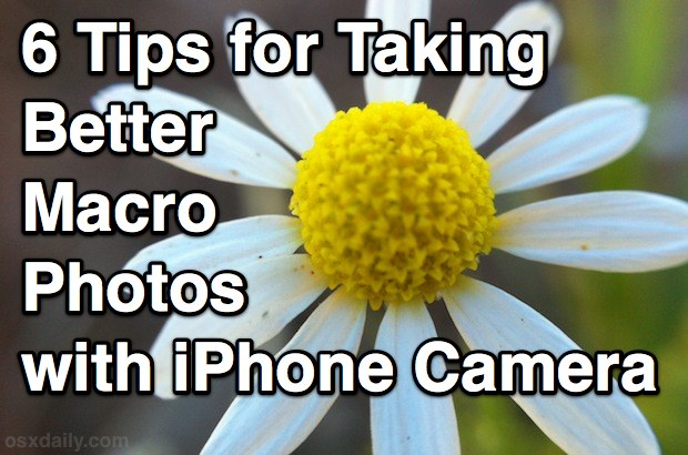 Tips for taking better Macro Photos with iPhone