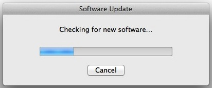 Software Update running