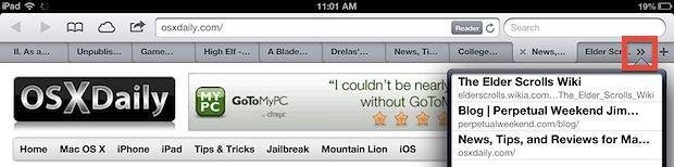 Access other tabs in Safari for iPad