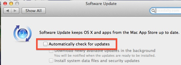 Disable automatic checks for software updates