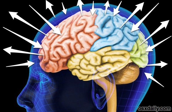 iPhone brain, get smarter with your iPhone
