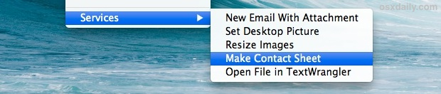 Services menu shown in the contextual menus of Mac OS X