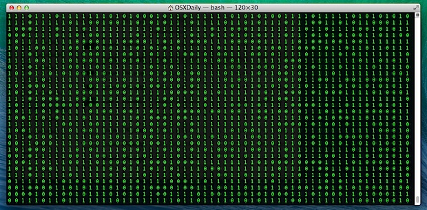 Scrolling binary terminal window