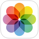 The Photos app iOS icon