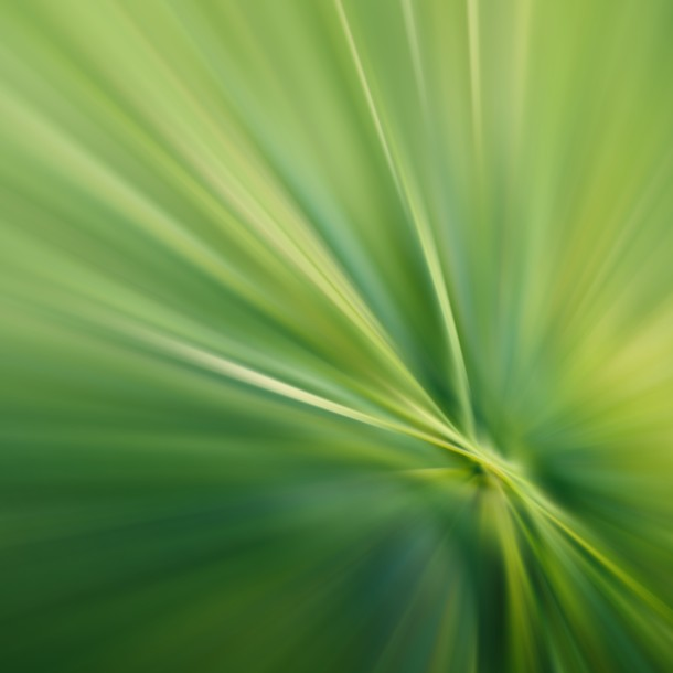 blurred-grass