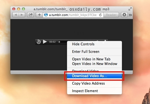 Download Video As option in Safari will save audio or video files in their raw format