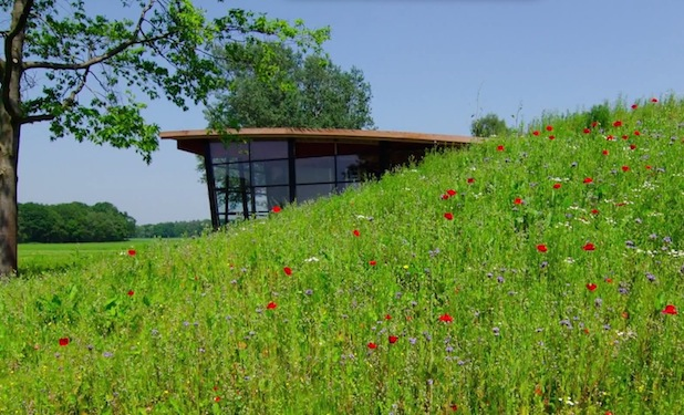 Stunning Custom Office Building tucked into a hillside, created by a landscape architect