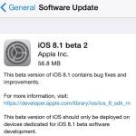 iOS 8.1 beta 2 OTA download