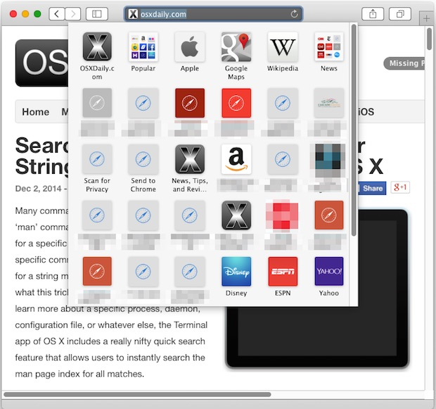 Safari Bookmark panel icons in Mac OS X