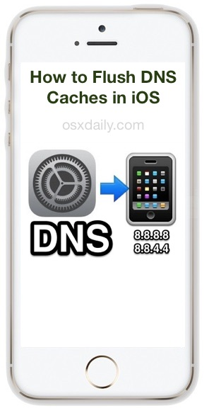 How to flush DNS cache in iOS