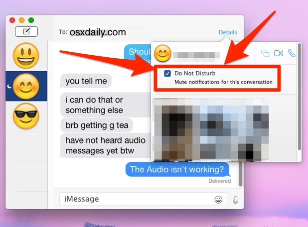 Mute a conversation in Messages for Mac