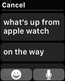 Custom Quick Replies to Messages on Apple Watch