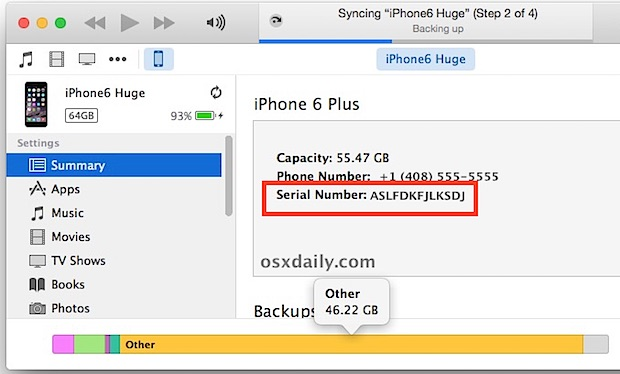 Finding an iPhone Serial Number from iTunes