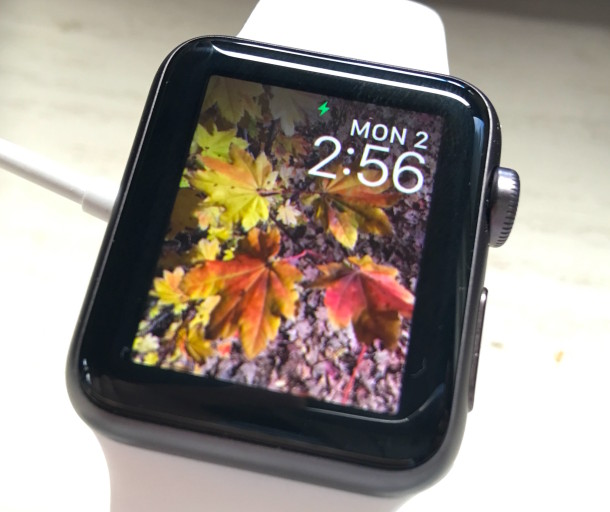 Apple Watch with photos copied over to it