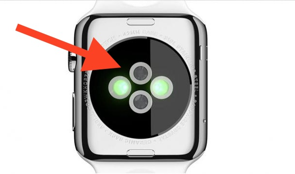 Bottom of Apple Watch where sensors are for heart rate etc