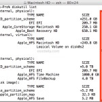 diskutil list and find disk ID identifier information on Mac