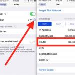 Find router gateway IP address info in iOS