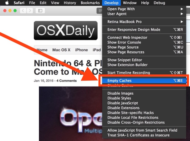 Clear Cache in Safari for Mac OS X with Empty Cache option in the Developer menu