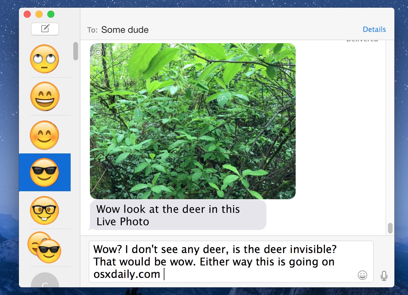 Play Live Photo in Messages for Mac