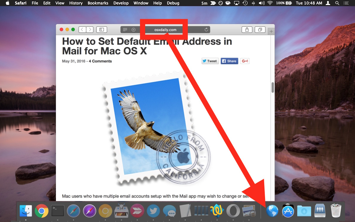 Add a website shortcut to the Dock in Mac OS X