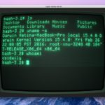 Amazing retro Mac terminal APPLE II