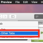 Close Other Tabs in Safari on Mac
