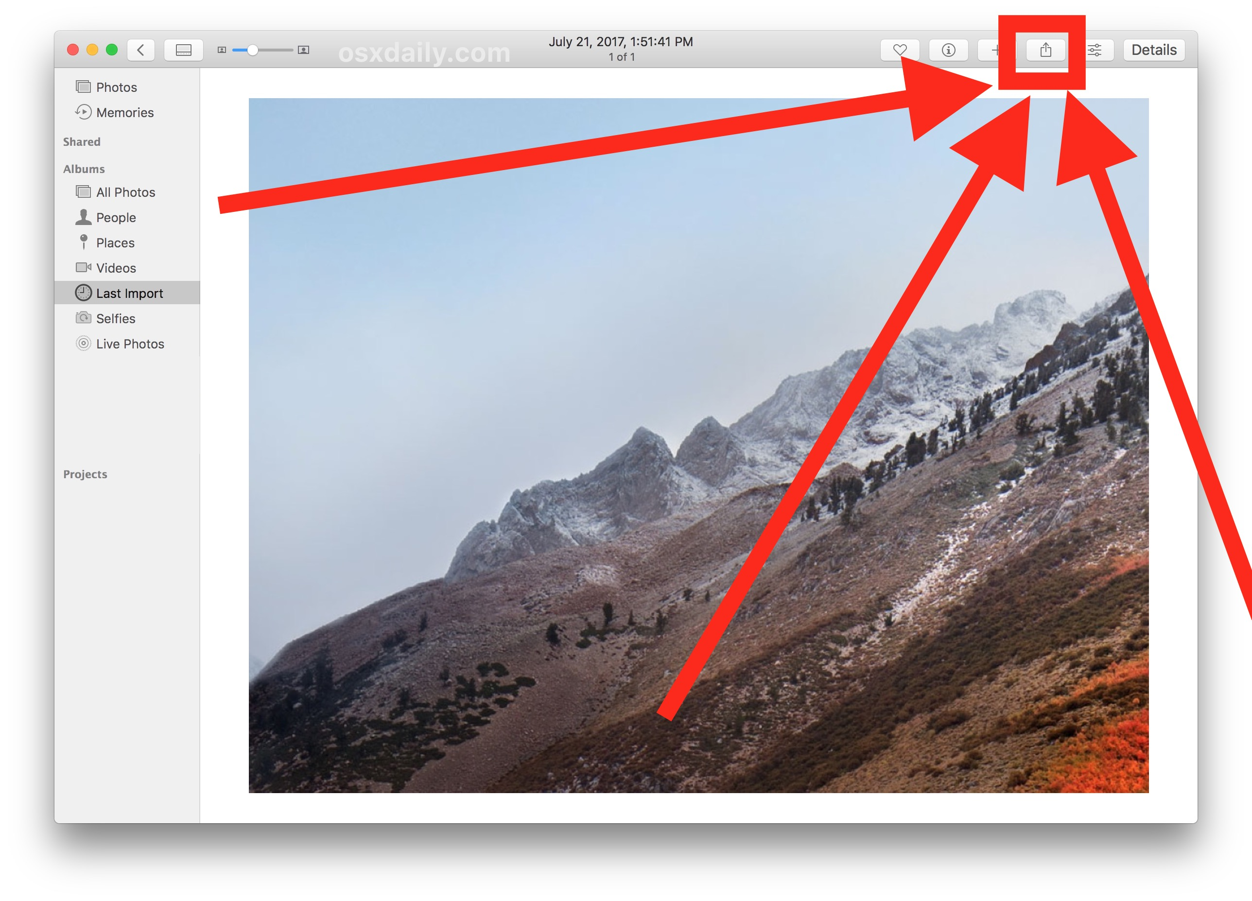 Choose the Share button in Mac Photos app