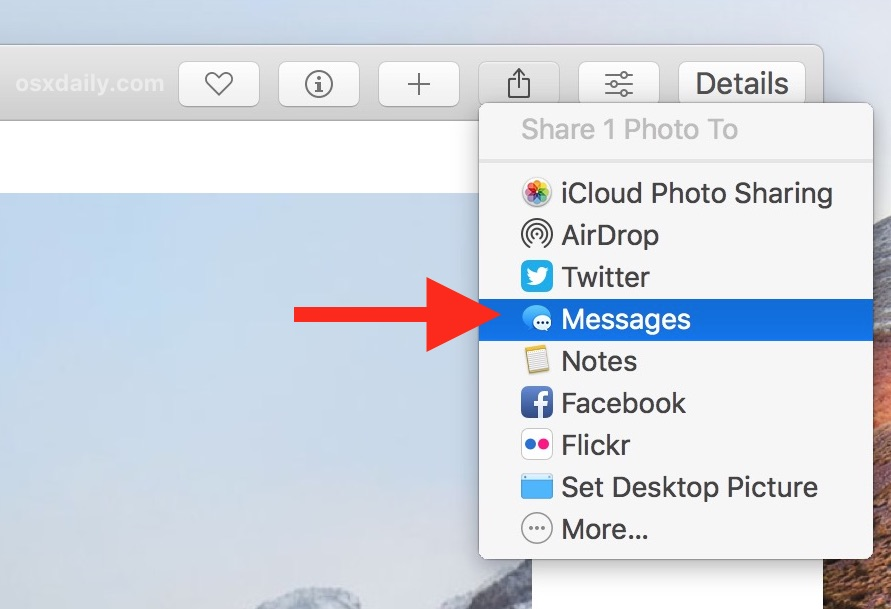 Choose how to share your picture or video from Photos on Mac