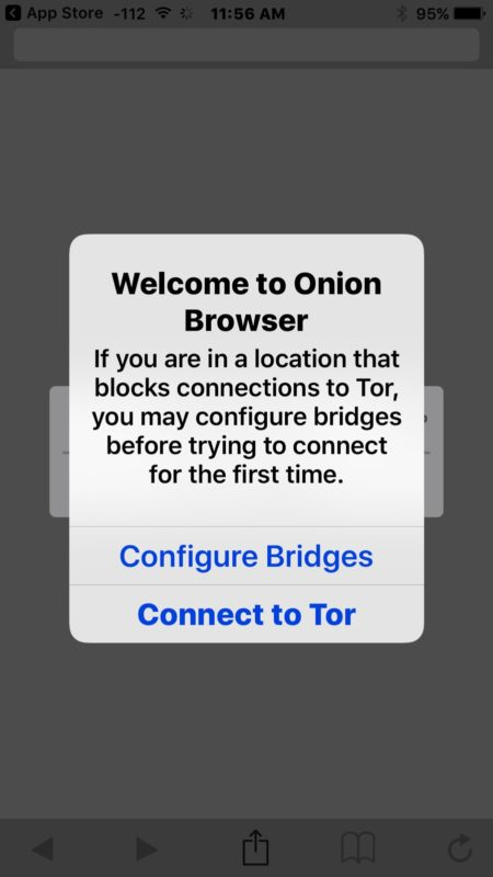 Connect to TOR with Onion Browser on iPhone