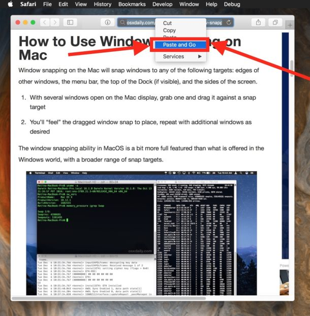 Use Paste and Go in Safari for Mac