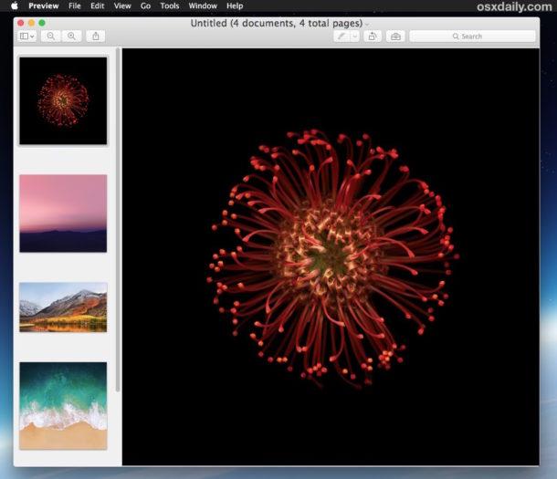 Preview windows open into single window on Mac
