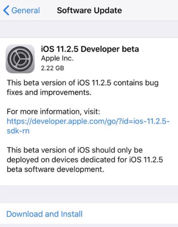 iOS 11.2.5 beta 1 download