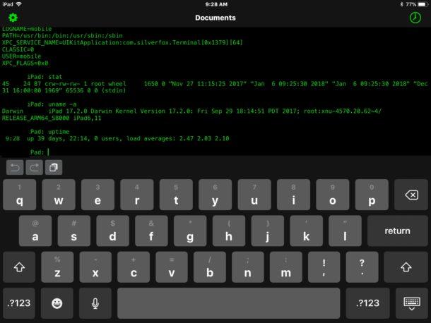 Terminal for iPad