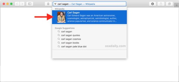 How to disable Safari Suggestions on Mac