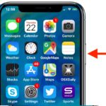 How to adjust Side button click speed on iPhone X