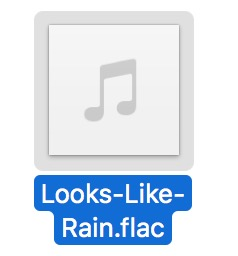 Flac audio file