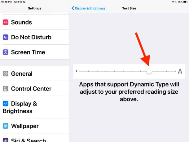 Adjusting text size on iPad in Settings for Display and Brightness