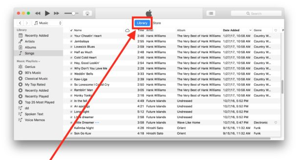 Accessing iTunes library in iTunes