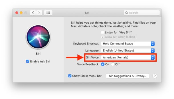 How to change Siri voice on Mac
