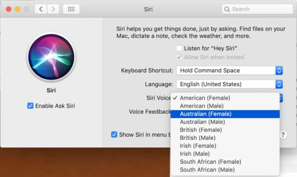 Siri voice gender and accent options on Mac