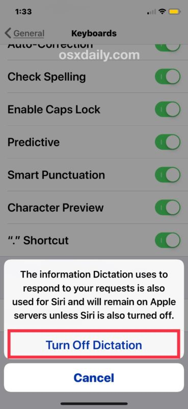 How to remove microphone from iOS keyboard