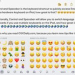 Emoji keyboard shortcut on iPad